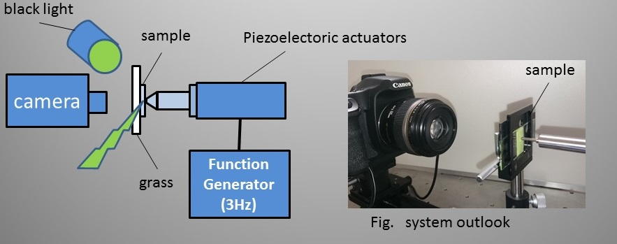 【応力発光強度測定装置】引用:宮崎大学 工学部 電子物理工学科より
